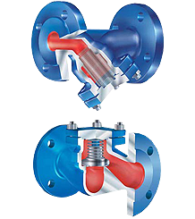 Strainers & Check Valves
